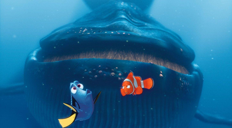 Baleine Le Monde de Nemo